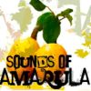 Sounds Of Amarula1.jpg